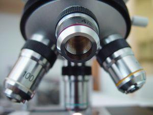Hasnyálmirigy enzim érték